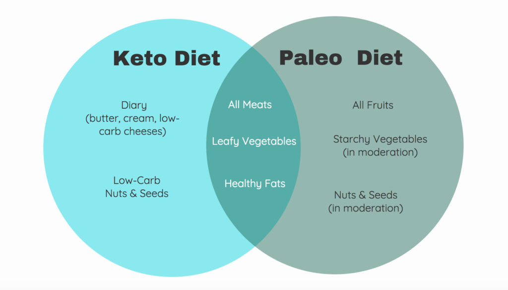 Paleo vs keto which diet is better forecasting