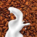 almond milk vs coconut milk