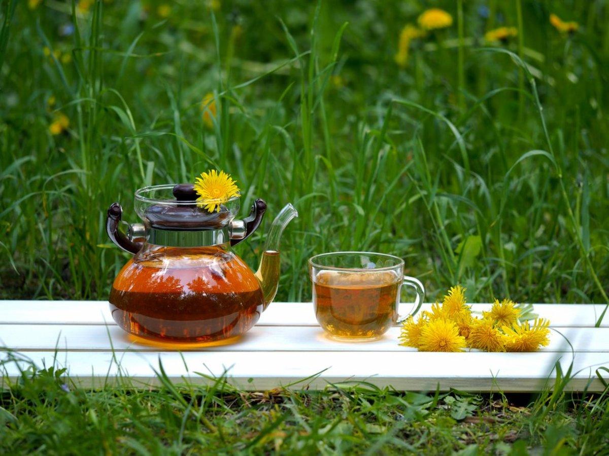 Benefits of Dandelion Tea